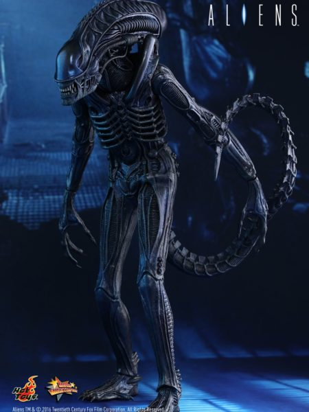 hot-toys-aliens-alien-warrior-toyslife-icon