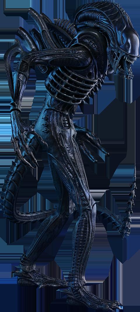 hot-toys-aliens-alien-warrior-toyslife