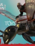 hot-toys-ant-man-on-flying-ant-toyslife-01