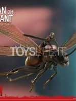 hot-toys-ant-man-on-flying-ant-toyslife-03