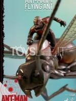hot-toys-ant-man-on-flying-ant-toyslife-icon