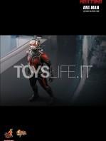 hot-toys-ant-man-toyslife-05