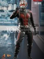 hot-toys-ant-man-toyslife-icon