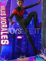 hot-toys-marvel-spiderman-into-the-spiderverse-miles-morales-1:6-figure-toyslife-11