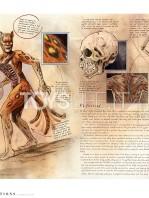insight-collectibles-dc-comics-art-book-anatomy-of-a-metahuman-toyslife-04