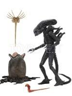 neca-alien-1979-40th-anniversary-alien-big-chap-ultimate-figure-toyslife-01