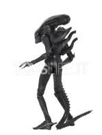 neca-alien-1979-40th-anniversary-alien-big-chap-ultimate-figure-toyslife-03