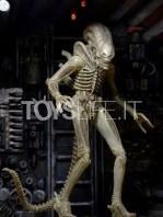 neca-alien-40th-anniversary-ripley-dallas-and-big-chap-figure-set-toyslife-03