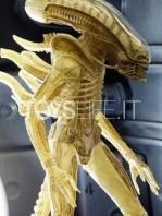 neca-alien-40th-anniversary-ripley-dallas-and-big-chap-figure-set-toyslife-06