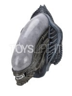 neca-alien-xenomorph-wall-mounted-lifesize-bust-toyslife-02