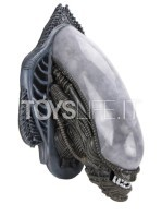 neca-alien-xenomorph-wall-mounted-lifesize-bust-toyslife-03