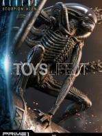 prime1-studio-comics-scorpion-alien-deluxe-statue-toyslife-08