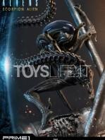 prime1-studio-comics-scorpion-alien-deluxe-statue-toyslife-09