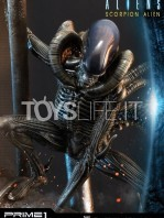 prime1-studio-comics-scorpion-alien-deluxe-statue-toyslife-11