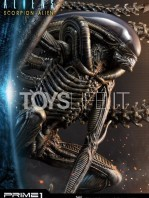 prime1-studio-comics-scorpion-alien-deluxe-statue-toyslife-12