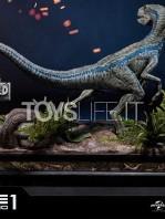 prime1-studio-jurassic-park-fallen-kingdom-blue-1:6-statue-toyslife-04