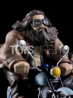 qmx-harry-potter-rubeus-hagrid-and-harry-q-fig-max-toyslife-05