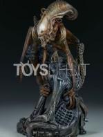 sideshow-mythos-alien-warrior-statue-toyslife-02
