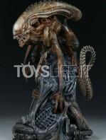 sideshow-mythos-alien-warrior-statue-toyslife-03