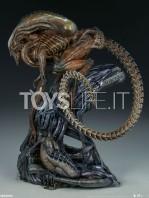 sideshow-mythos-alien-warrior-statue-toyslife-04