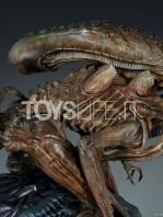 sideshow-mythos-alien-warrior-statue-toyslife-07