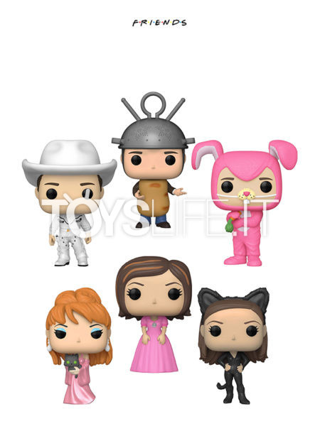 Funko Television Friends Chandler Bunny/ Cowboy Joey/ Ross Sputnik/ Monica Catwoman/ Phoebe Music/ Rachel Pink