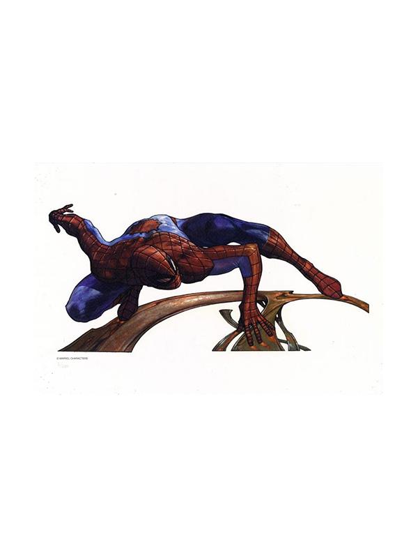 Marvel Spiderman Limited Art Print by Simone Bianchi 67/400